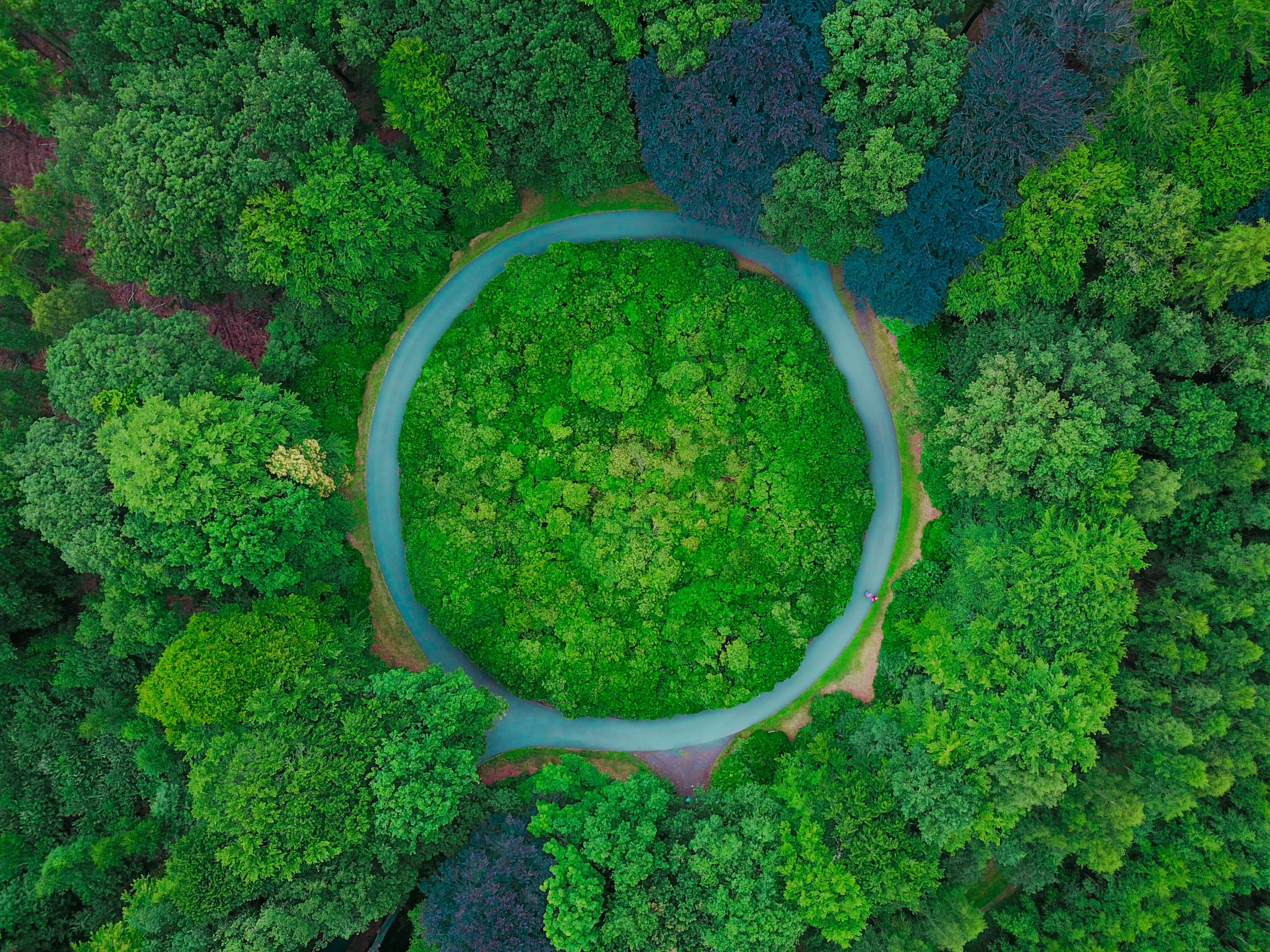 IEA Bioenergie Task 42: Working Period 2019 – 2021